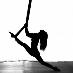 8 Yoga or Aerial Classes $200
