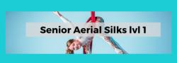 Teen Aerial Silks: INTRO/ level 1