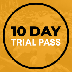10 Day Trial Pass