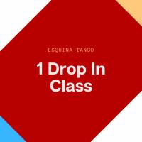 Drop-In Single Class