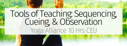 Tools of Teaching: Sequencing, Cueing, & Observation