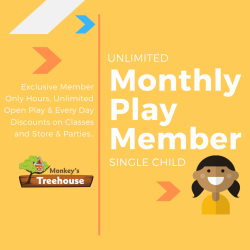 Monthly Play Member - Single Child
