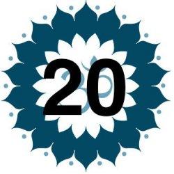 20-Class Pass