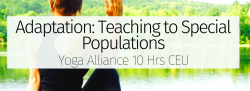 Adaptation: Teaching to Special Populations