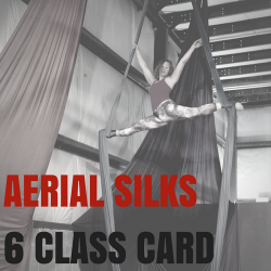 6 Class Card (Silks or Hoop)