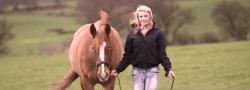 Equine Leadership Retreat