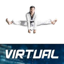 Virtual TKD Month to Month
