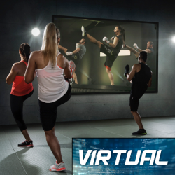 Virtual Cardio Kickboxing/Boot Camp Month to Month