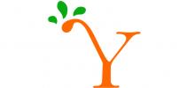 Austin Yoga Tree