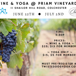 Wine & Yoga at the Vineyard: YOGA ONLY