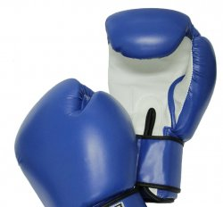 Training Gear:  Official Gracie Jiu-Jitsu 18oz. Fight Simulation Gloves