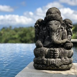 Bali Retreat: Deposit