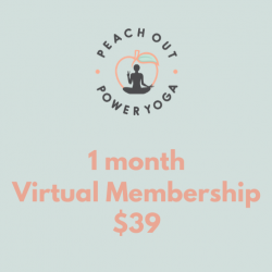 1-Month Virtual Membership