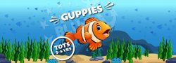 Tots - Guppies - 10 weeks