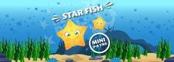 Mini - Star Fish