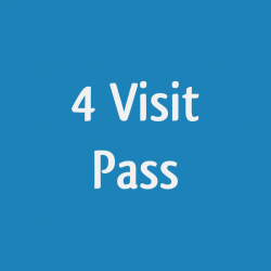 4 visit pass - Halo-IR booth - PRIVATE session