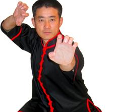Kung Fu Jacket