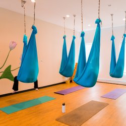Aerial Yoga Teacher Training Full Payment