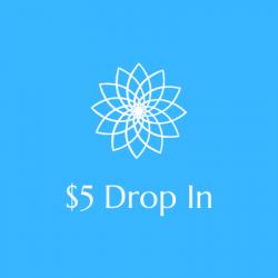 $5 Drop In