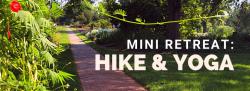 Mini Retreat w/ Wellbeing Brewing