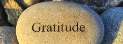 Thanksgiving Day Gratitude Practice - Virtual