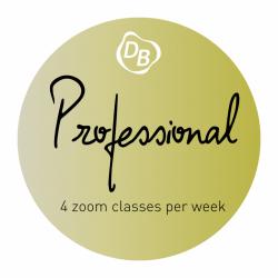 Professional Enrollment + Registration