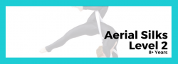 Elementary Aerial Silks Level 1/2