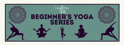 Beginner's Yoga Series