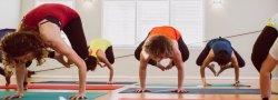 Yoga Teacher Training (300 hr) Module 4