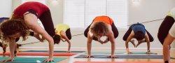 Yoga Teacher Training (300 hr) Module 2