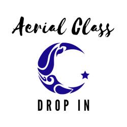 Aerial Class Drop In