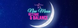 November's New Moon - Restore & Balance