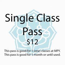 Single Class Pass (drop-in)
