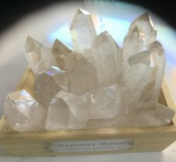 Radiant Moon- Clear Quartz Point