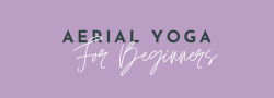 Aerial Yoga for Beginners Series