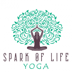 Spark of Life Yoga 10x Class Package ($11 e) $110