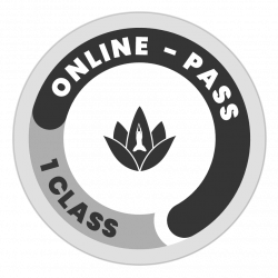 Online Casual Pass