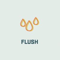 Flush (Pass)