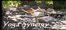 Yoga Synergy Spa