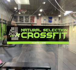 NSXFit Decal (Static's Hold)