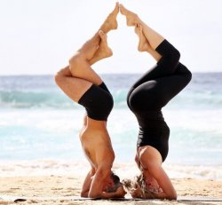 Advanced Yoga Fundamentals Online Course from Yoga Synergy