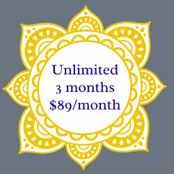 Unlimited Monthly Membership 3 Month Commitment