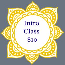 $10 Intro Class