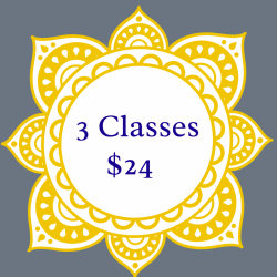 3 Classes for $24