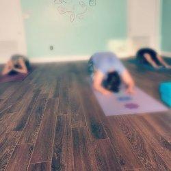 Private/Corporate Yoga Class