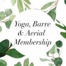 Yoga, Flobody, Zumba, Pilates, Barre & Aerial Membership- $99/month for 6 months