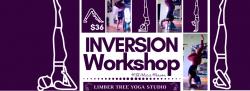 Inversion Workshop (In-Studio)