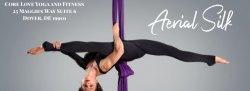 Aerial Silk 1-Trying Something New: Beginner Silk Series- Learn the Basics (4 week series- $140)