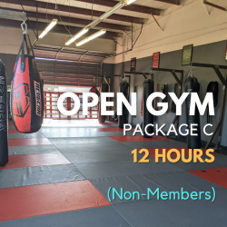 Open Gym Package C