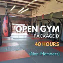 Open Gym Pkg D - 40 Visits